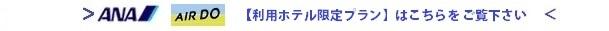 ANA/AIRDO利用プラン